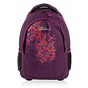 Универсальный школьный рюкзак на колесах Веstway 40028 цвет 1922 + дождевик
